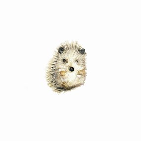 HANG. RUSTIC HEDGEHOG