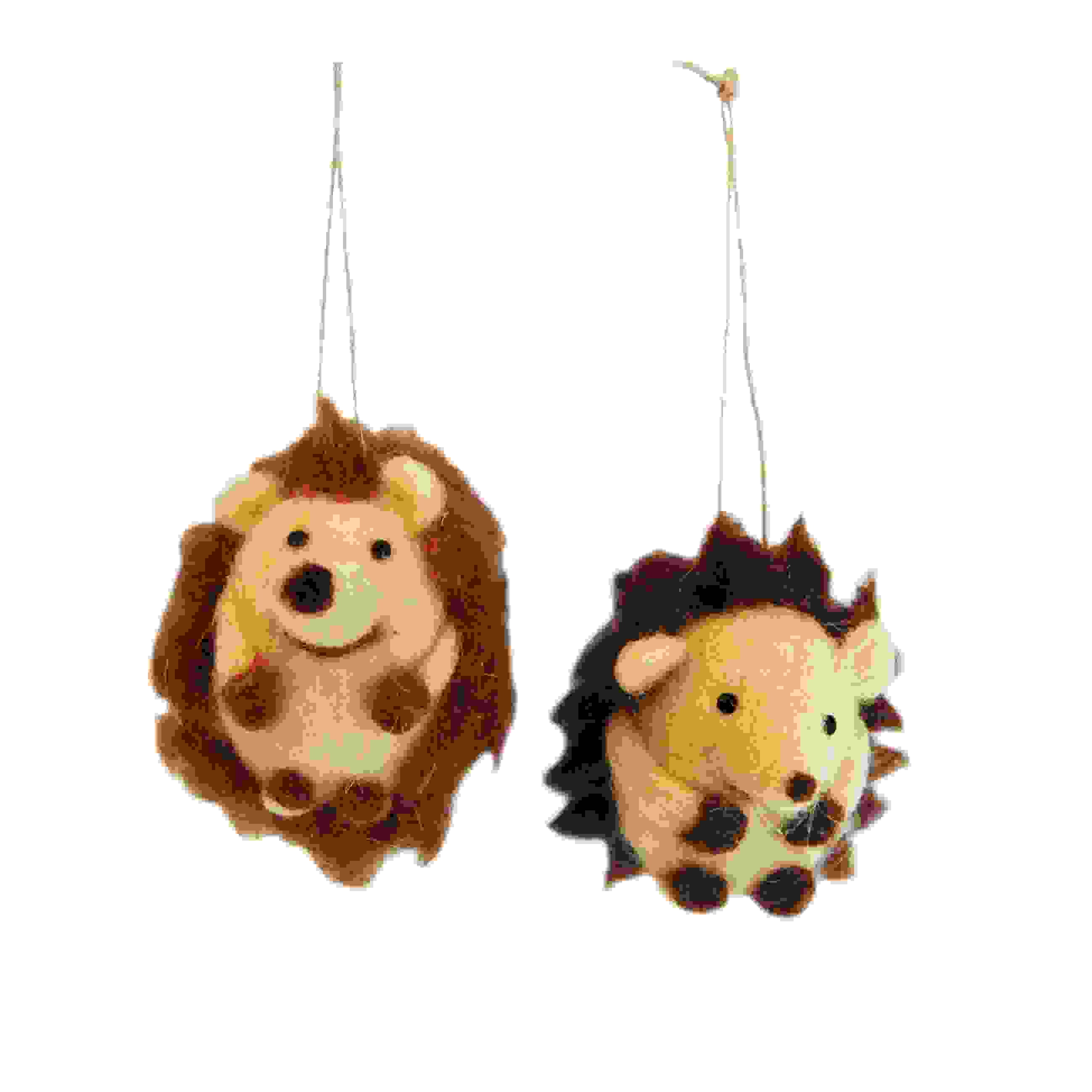 HANG. HEDGEHOGS ASS