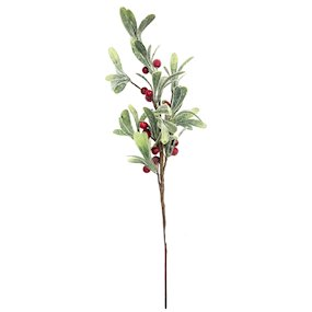 STEM RED BERRY MISTLETOE